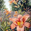 Skip Enge - Day Lily